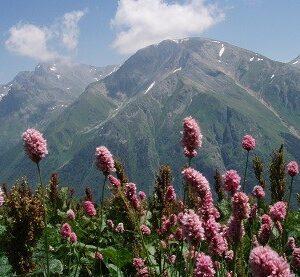 Кавказские минеральные воды - Пейзажи вблизи Пятигорска