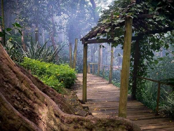 Отдых на острове Фиджи - Сад спящего великана