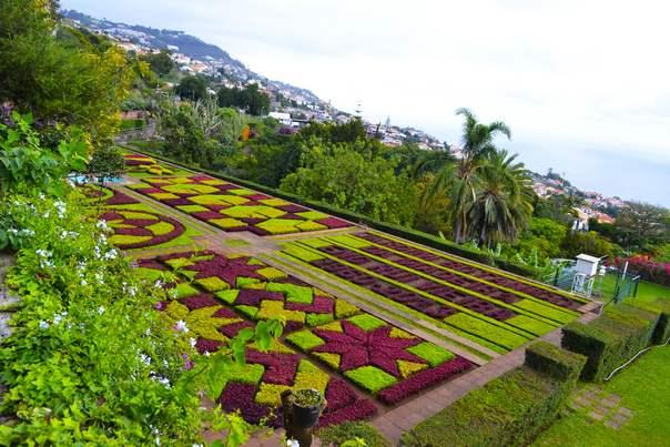 Мадейра отдых, цены - Мадейра Ботанический сад