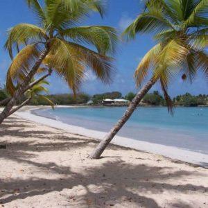 Отдых на острове Мартиника-удивительные пляжи Мартиники