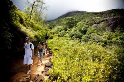 отдых на Сейшельских островах, остров Маэ - «Сейшельский Морн», здесь проложены различные пешеходные тропинки