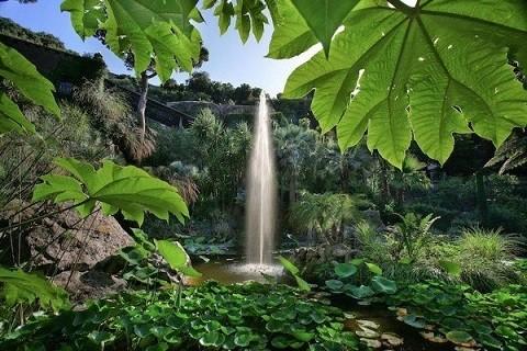 Отдых на острове Искья - очаровательный Ботанический сад (Giardini La Mortella)