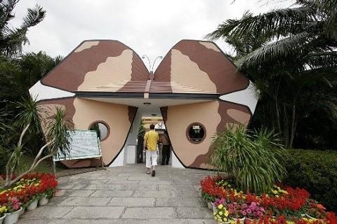 Отдых на острове Хайнань, сад бабочек и музей раковин
