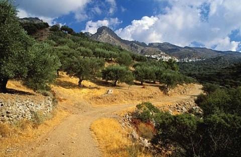 Отдых на острове Крит, рельеф острова.
