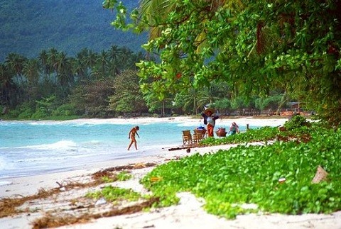 Отдых на островах Тайланда, остров-Панган утопает в зелени