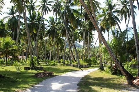 отдых на Сейшельских островах, острова Ла Диг, парк Юнион - дорога к пляжу Source D'argent